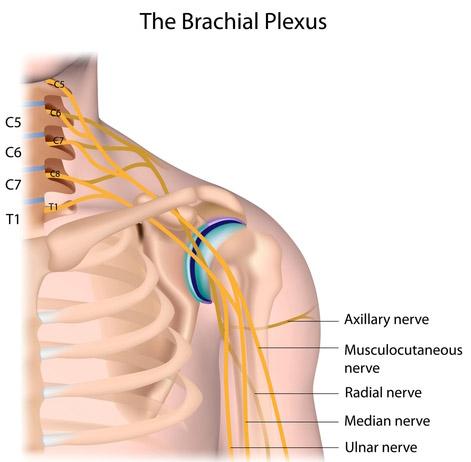articulația șoldului în partea dreaptă a cauzei un braț dureros în articulația cotului
